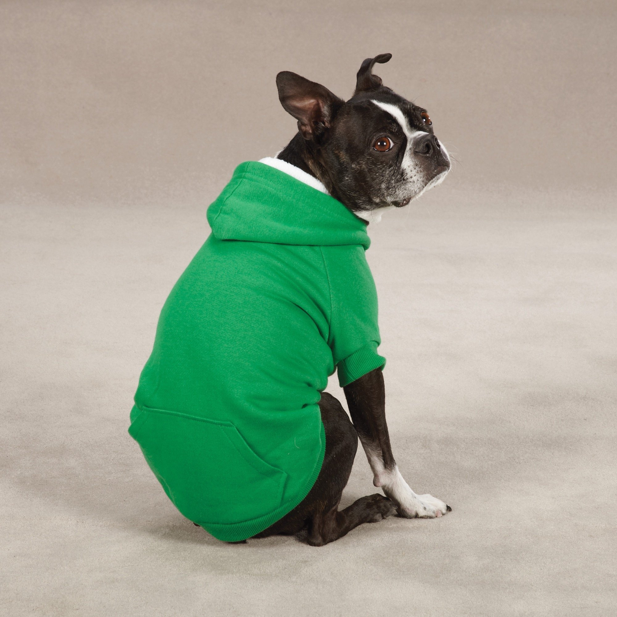 Zack & Zoey Fleece-Lined Hoodie for Dogs, 14'' Small/Medium, Green by Zack & Zoey