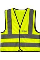 TorxGear Kids Child Safety Vest, Children's Hi-Vis Apparel, 4 Reflective Strips