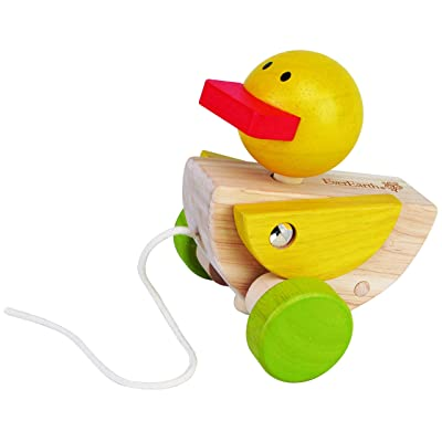 EverEarth - Pull Along Duck (EE32587): Toys & Games