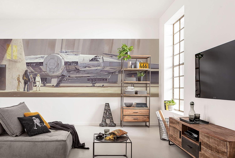 Komar 4 4112 Classic Rmq Millenium Falcon Photo Wallpaper Size 368 X 127 Cm Width X Height Starship Star Wars 9 Skywalker Wallpaper Wall Decoration 4 4112 Colourful Amazon Com