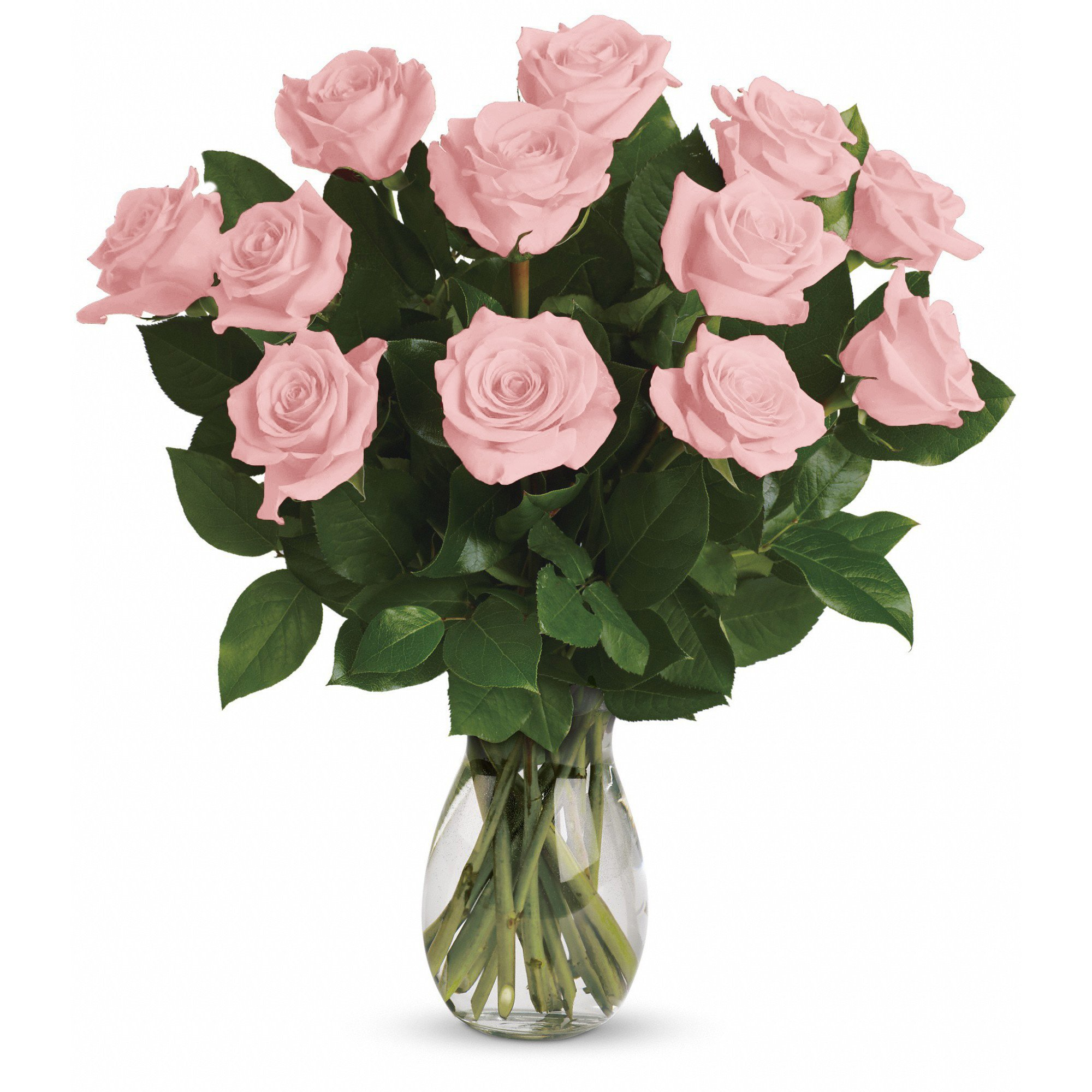 Farm Direct Rose Bouquet of 12 Fresh Cut Roses with Vase (Light Pink)