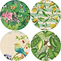 Ceramic Coaster Set of 4, Glasses Cup Holder Coffee Mug Place Mats Absorbent Stone Coasters for Drinks (Beautiful Songbirds)