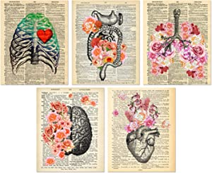 Organs & Flower Anatomy Art Prints - Dictionary Steampunk Goth Room Decor - Set of 5 Unframed (8x10 inches) Steampunk Medical Wall Art - Vintage Theme - Not On Real Dictionary Pages - Set 3
