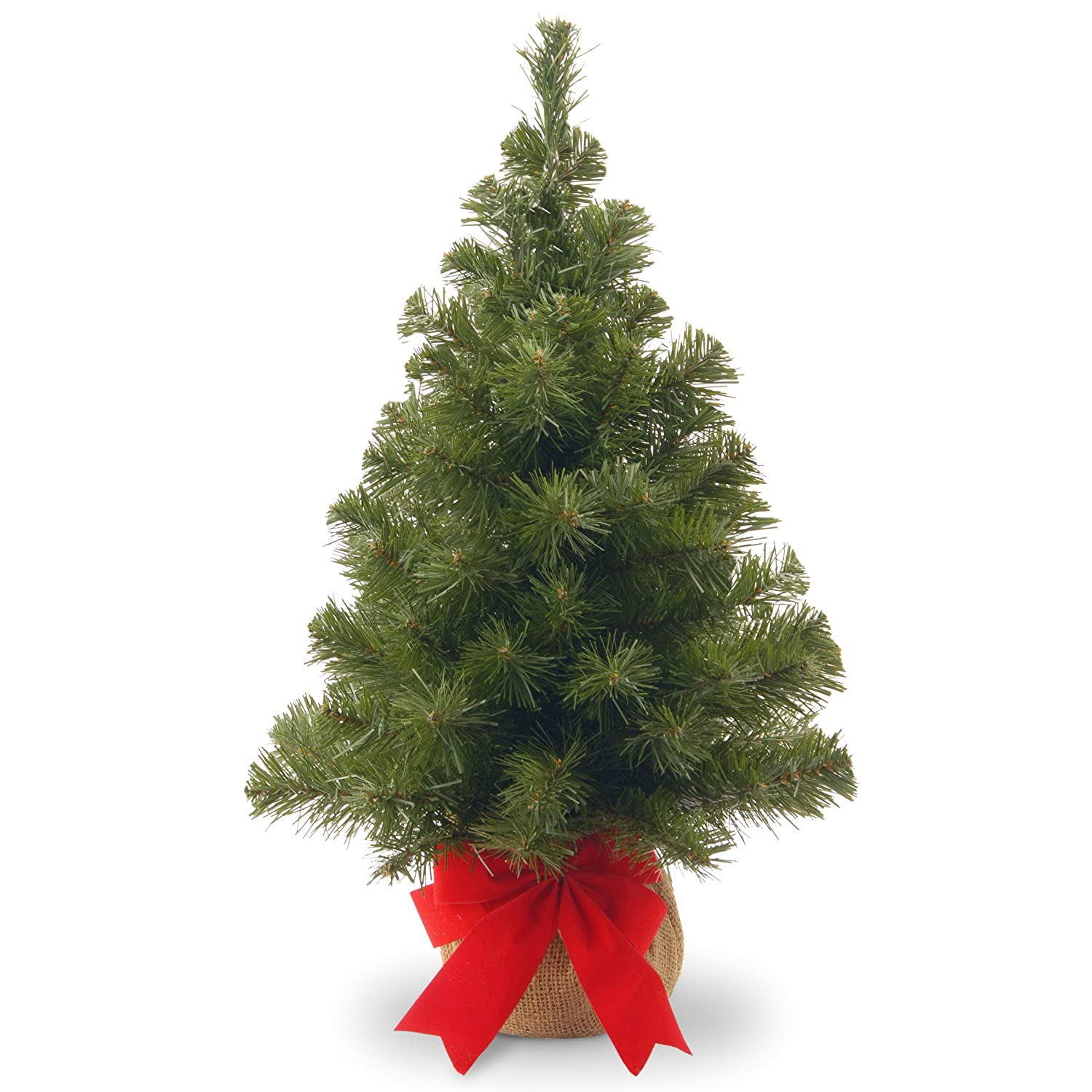 Amazon.com: National Tree 2 Foot Noble Spruce Tree with Burlap Bag ...