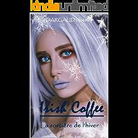 Irish Coffee La sorcière de l'hiver: Bit-lit (French Edition) book cover