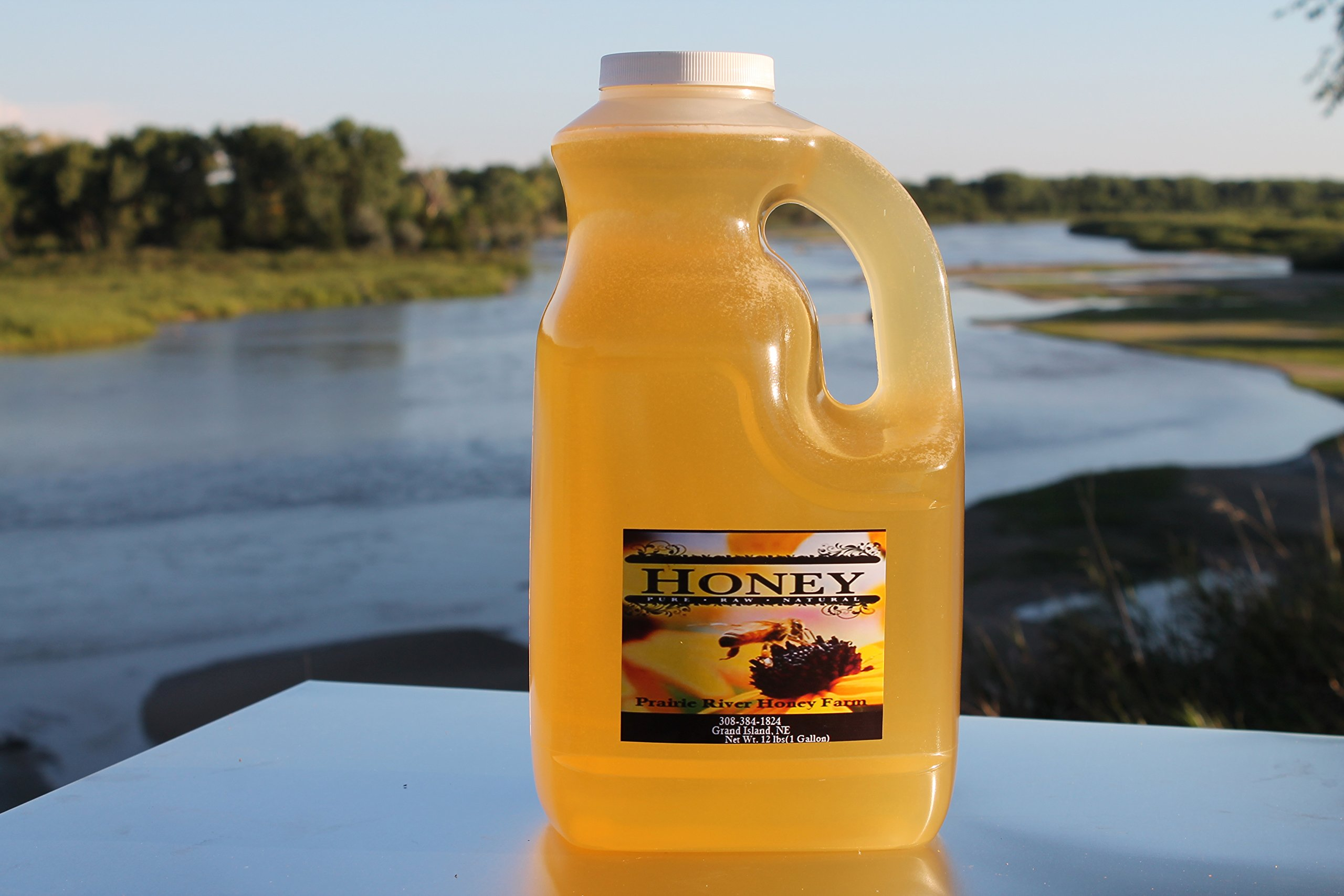 Raw Honey Pure Natural Nebraska Honey One (12lb) 1-Gallon Jug