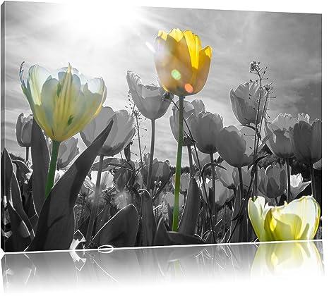 Blume Tulpe Pflanzen Bild Bilder Gerahmt Wandbild Kunstdruck 5 Teilig