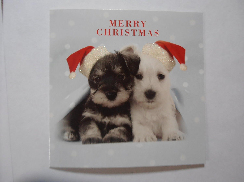 Schnauzer & Westie puppy dog in Santa Hats 5 pack of 5\