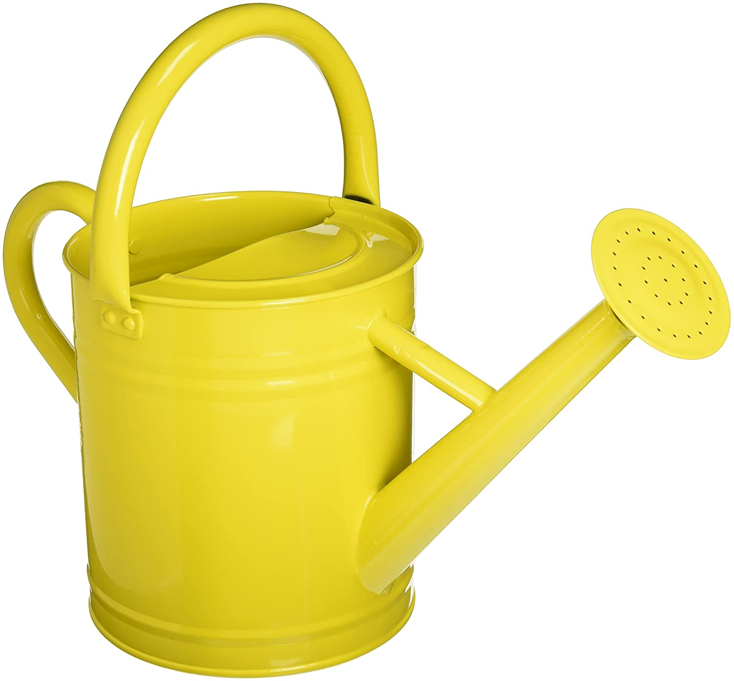 Top 10 Best Watering Cans