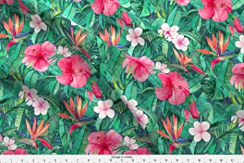 Amazon strelitzia fabric classic tropical floral with pink strelitzia fabric classic tropical floral with pink flowers small by micklyn printed on sport lycra fabric mightylinksfo