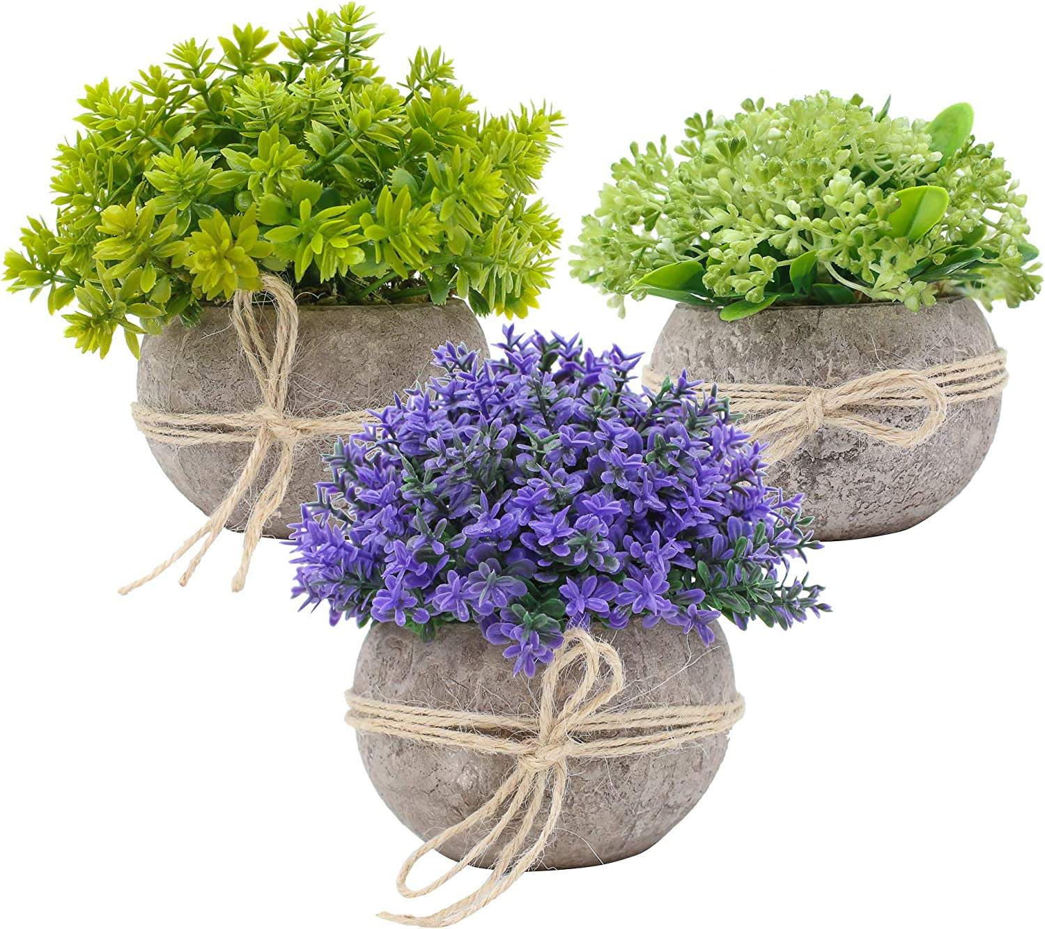 Amazon Com Ezra Decorative Plants 3 Piece Set Artificial