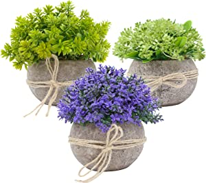 Ezra Decorative Plants – 3-Piece Set Artificial Potted Plants – Mini Plants Farmhouse Decorations – No Watering, Low Maintenance – Highly Realistic Design – Ideal for Bathroom, Office, Home