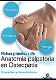 Fichas prácticas de anatomía palpatoria en osteopatía: Edición en color (Medicina nº 1) (Spanish Edition)