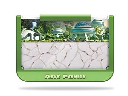 Amazon.com  Uncle Milton Ant Farm - Live Ant Habitat – 60th Ant ... 36ae49a1e
