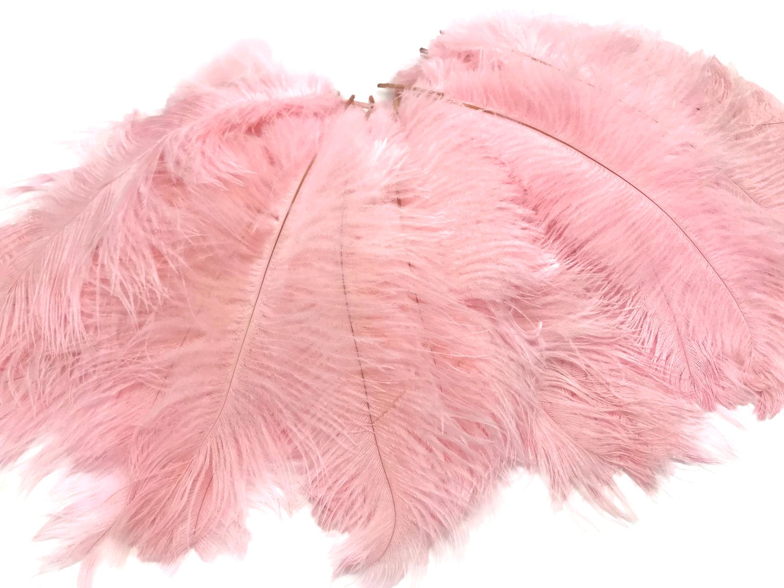1/2 Lb - 8-10'' Baby Pink Wholesale Ostrich Drab Feathers (Bulk) Party Centerpiece Wedding Gatsby | Moonlight Feather by Moonlight Feather | USA SELLER (Image #5)