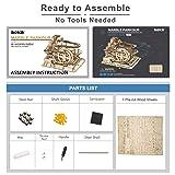 ROKR Marble Run Wooden Model Kits 3D Puzzle