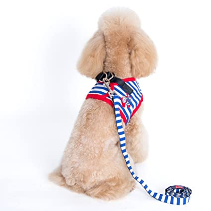36b923b3ea Alfie Pet by Petoga Couture - Vince Sailor Harness and Leash Set - Color:  Blue