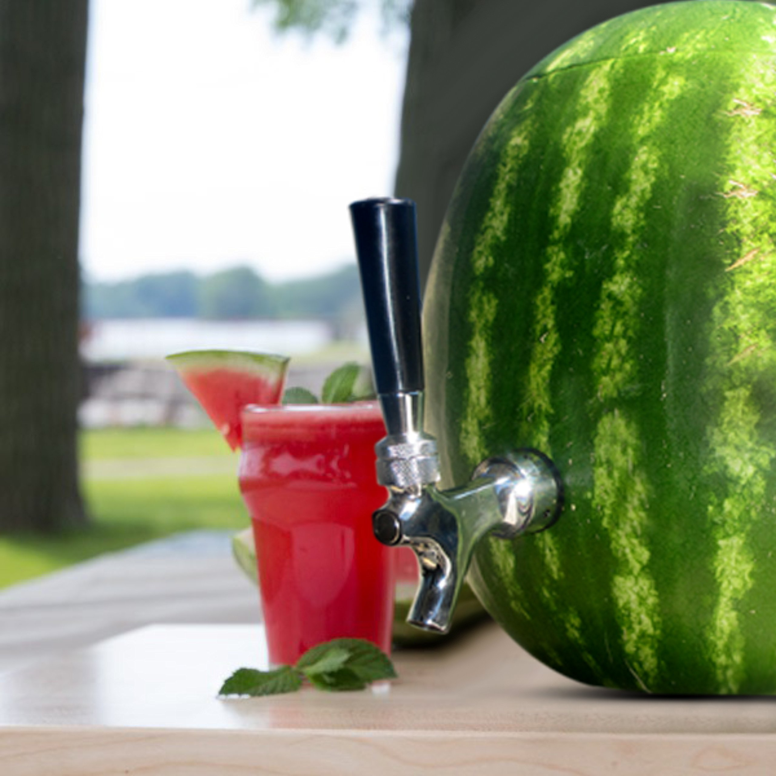 Blazin' Watermelon Tap - Brass and Chrome Keg Kit - Pumpkin Fruit Ice Tea Drink Dispenser