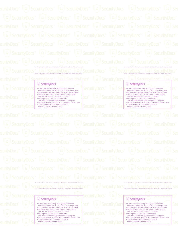 Amazon.com : SecurityDocs Security Paper - 8.5 x 11 Inches, 500 ...