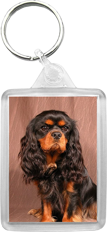 Cavalier King Charles Keyring Gift//Present Dog