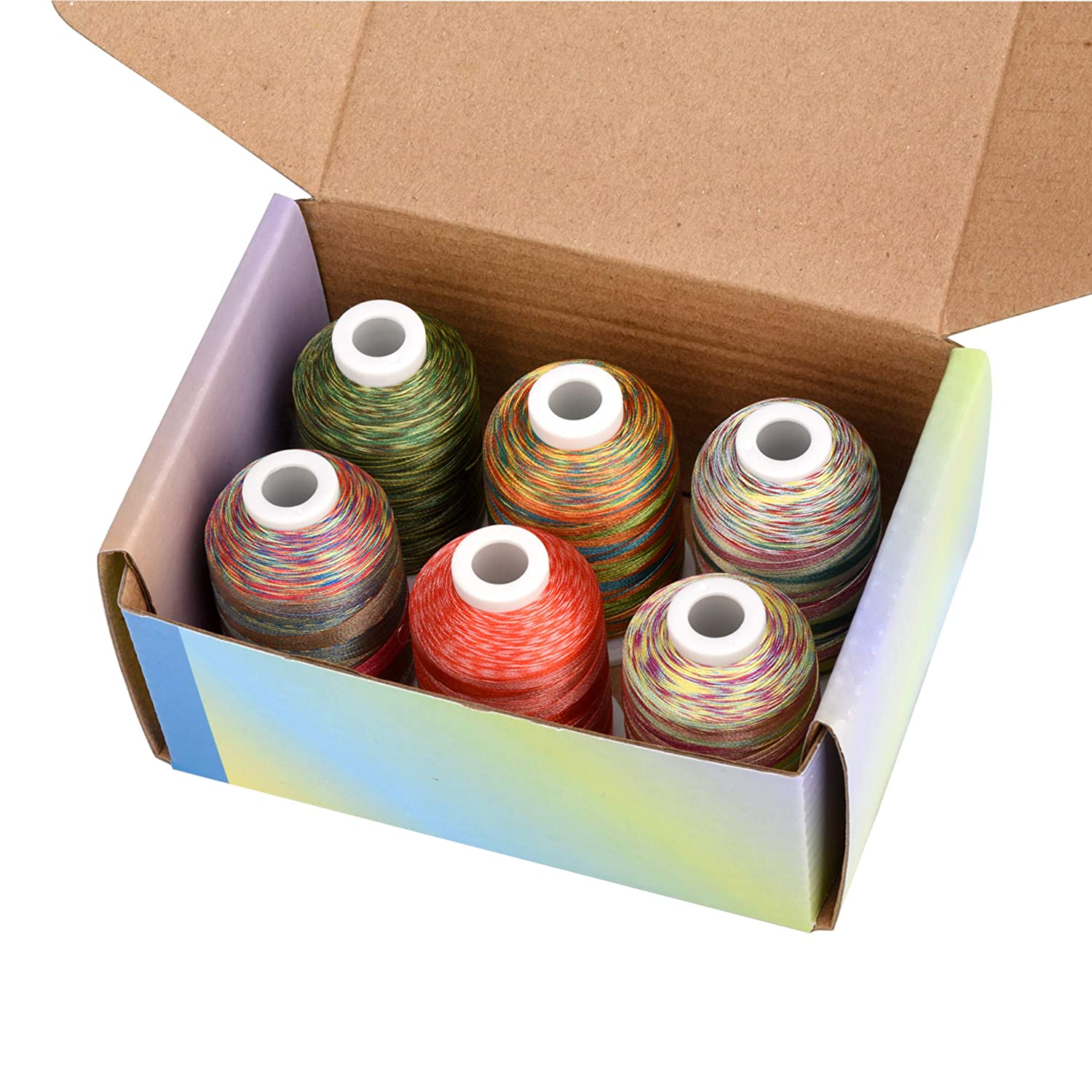 Simthread 6 Variegated 1100 Yards Polyester Embroidery Machine Thread for Decoration Babylock Singer Brother Janome Pfaff Bernina Husqvarna Embroidery and Sewing Machines Anemone Garden 1000M