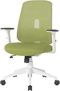 NOUHAUS Palette Ergonomic Office Chair Comfortable Swivel Computer Desk Chair, Lumbar Adjust Rolling Chair. (Green)