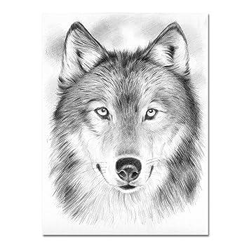 Mal Sets Zeichnen Lernen Leicht Gemacht Wolf Amazonde Küche