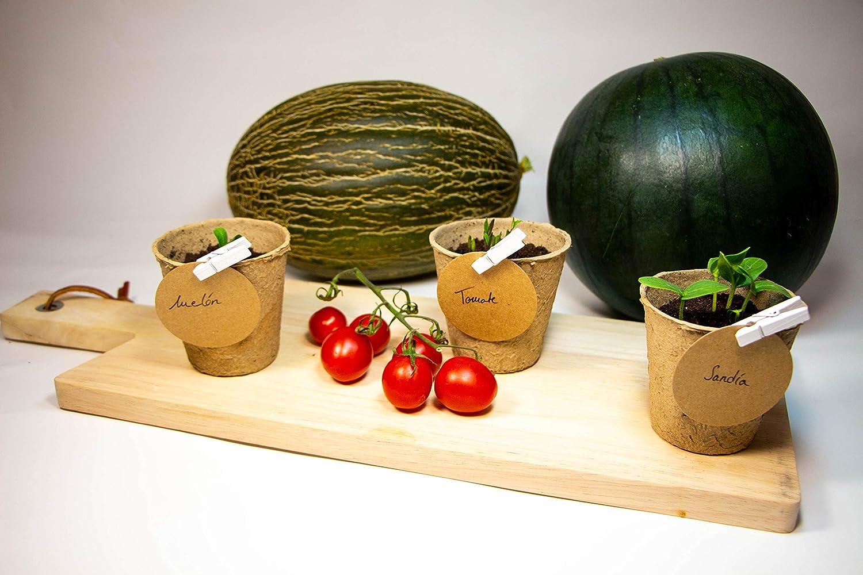 Kit de plantas para huerto urbano. Semillas: sandía, melón piel de sapo y tomate cherry
