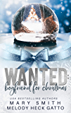 Wanted: Boyfriend for Christmas (The Holiday Series Book 1)