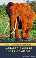 ¿Cuánto Sabes De Los Elefantes?: Datos Curiosos