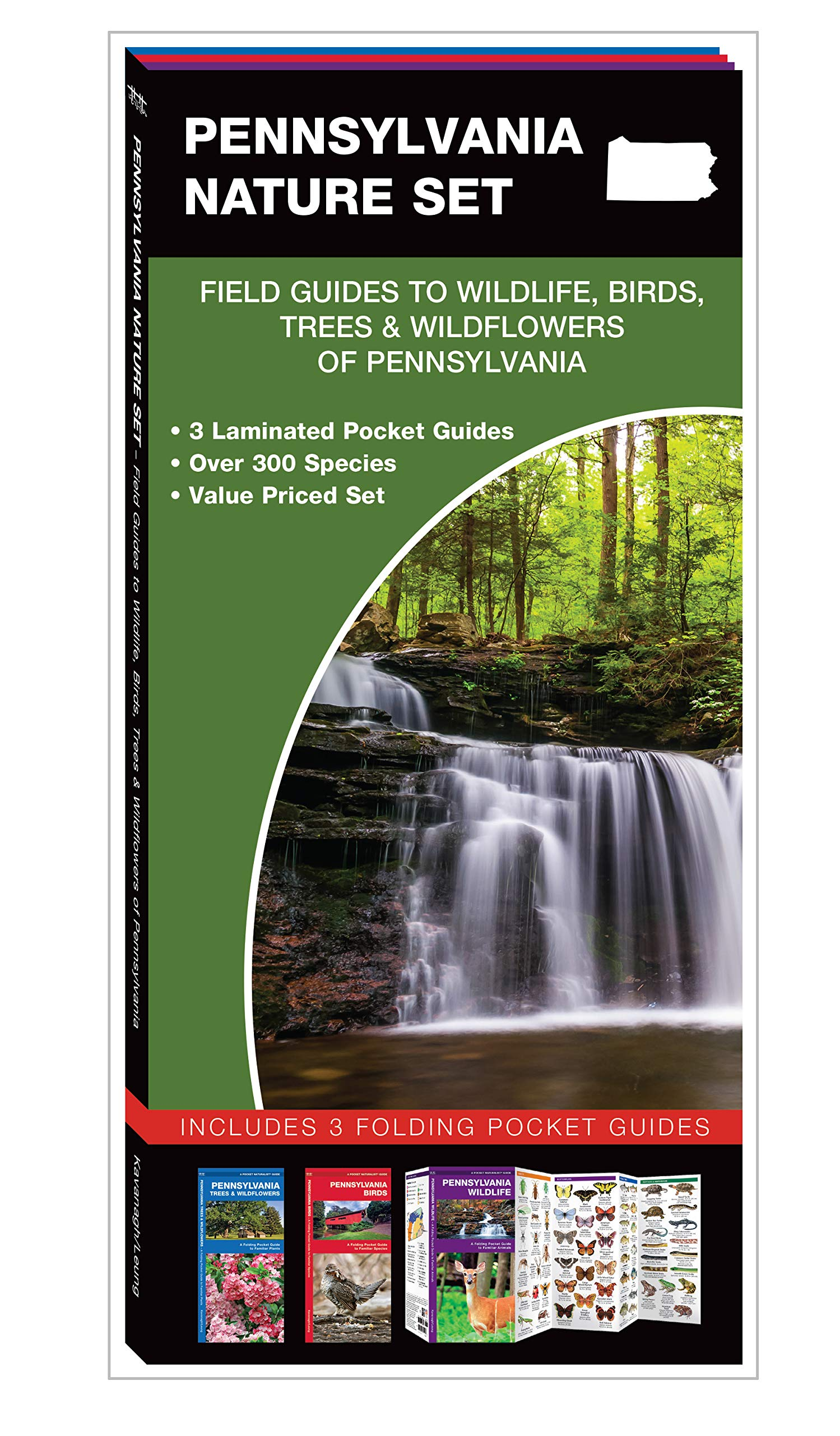 Pennsylvania Nature Set: Field Guides to Wildlife, Birds, Trees &  Wildflowers of Pennsylvania: James Kavanagh, Waterford Press, Raymond  Leung: ...