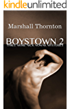 Boystown 2: Three More Nick Nowak Mysteries (Boystown Mysteries)