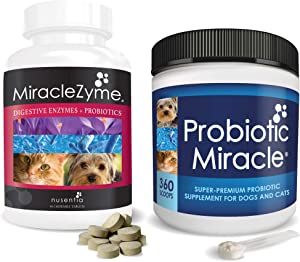 Probiotic Miracle Booster Bundle - Plus Digestive Enzymes Chews for Dogs - + Prebiotics. Gluten free, no dairy, no byproducts. Ideal for diarrhea, loose stool, gas, and intestinal discomfort.