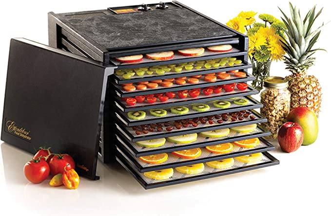 10 Best Food Dehydrator Reviews