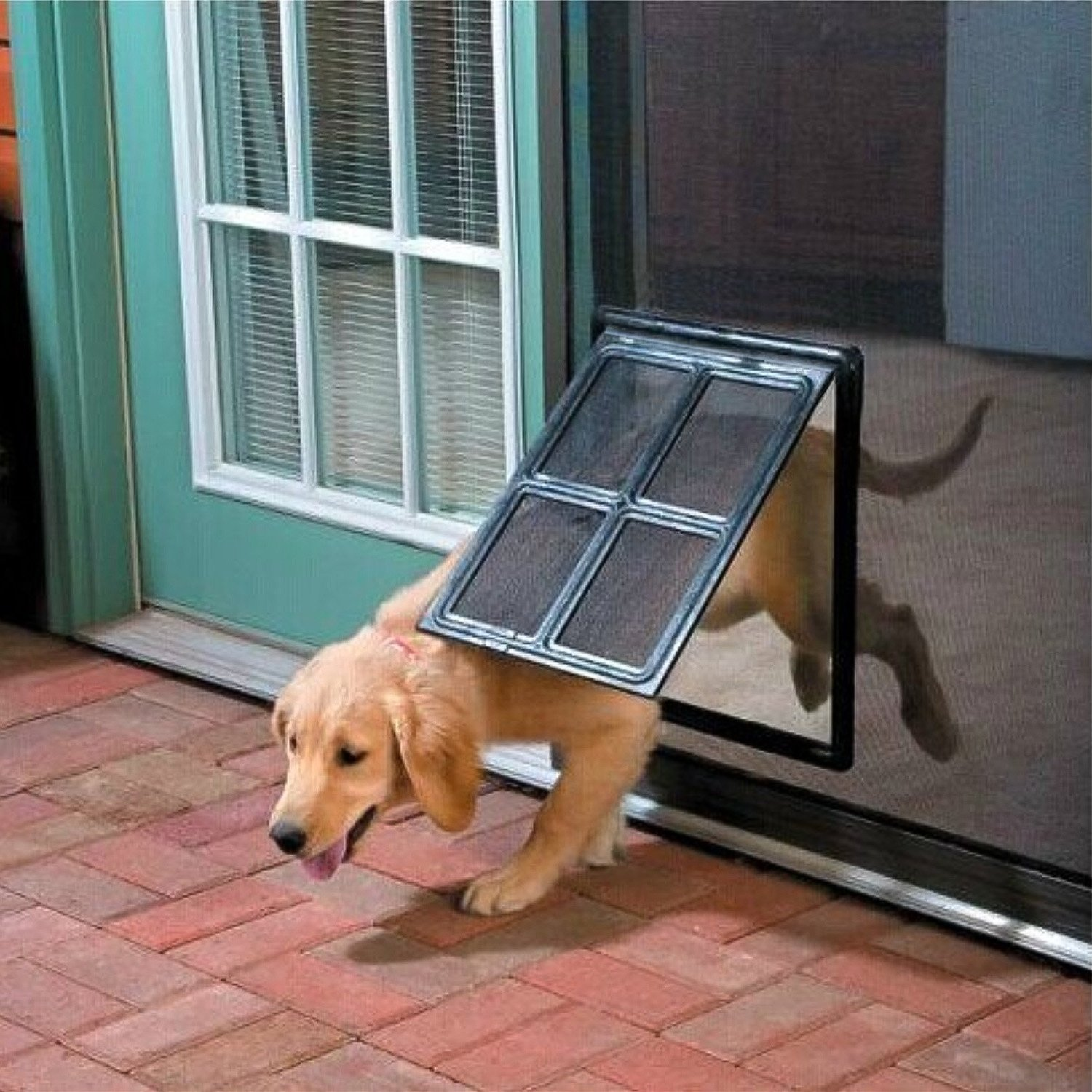 Namsan Magnetic Automatic Lock/Lockable Pet Screen Door Dog Gate Way Pet Door for Screens - Larger 12'' x 16'' by Namsan