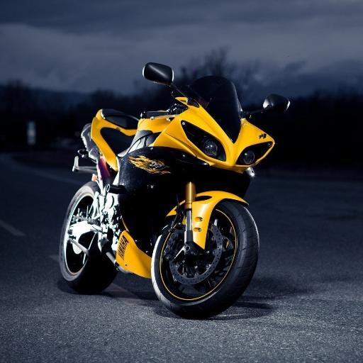 Harley Sportbike - 9