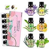 Aceites Esenciales para Humidificador Aceite Esencial 100% Naturales Puro Aromaterapia Esencias para Humidificador…