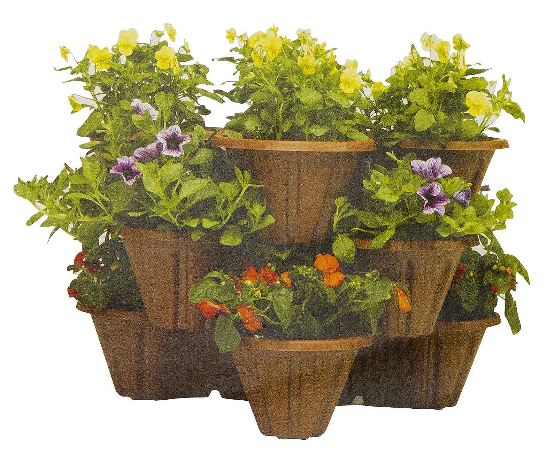 6 x Fraise JARDINIERE-empilés dans Trios-Plantes de jardin-pots en plastique-Noir