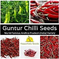 Chilli Guntur 10 Chili Seeds ANDHRA Indian Super HOT Dark RED Pepper Vegetable