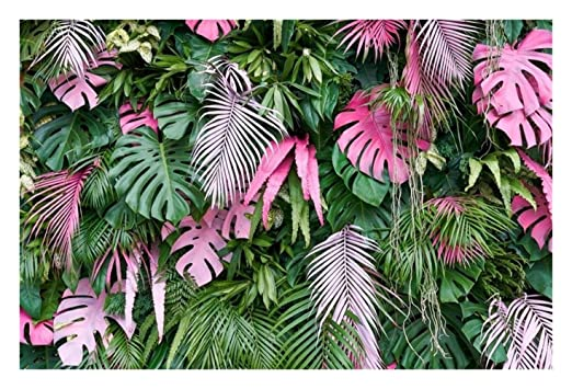 ZMK-720 Tela de Fondo Retrato Tropical De La Palmera Hojas ...