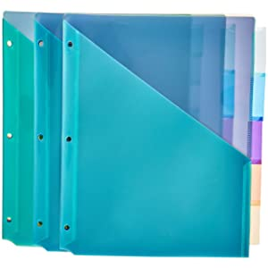 AmazonBasics Two Pocket Plastic Dividers, 5 Tab Set, Multicolor, Pack of 3 Sets