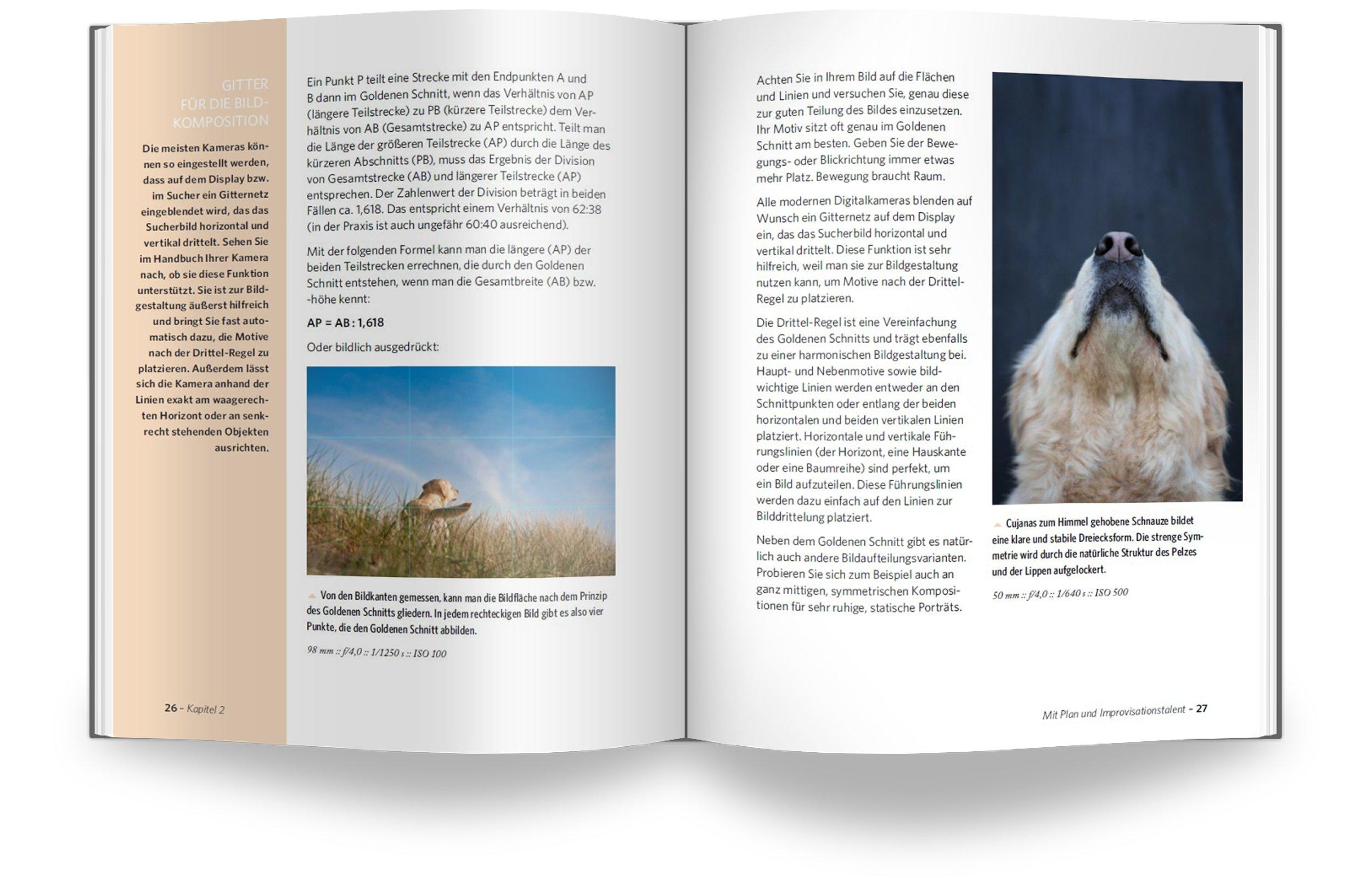 Fotoschule Extra Tierfotografie Draußen Und Drinnen Hunde Pferde Katzen U A Richtig Fotografieren Wiebke Haas Bücher