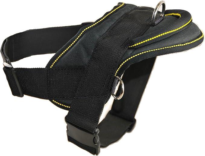 My Pitbull Sweetheart Sport Waist Packs Fanny Pack Adjustable For Travel