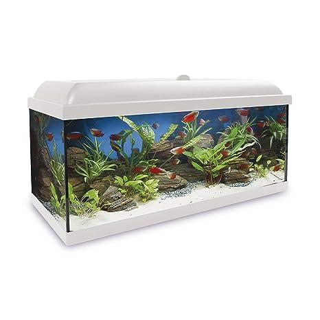 ICA KHA150B Kit Hydra 150 para Agua Dulce