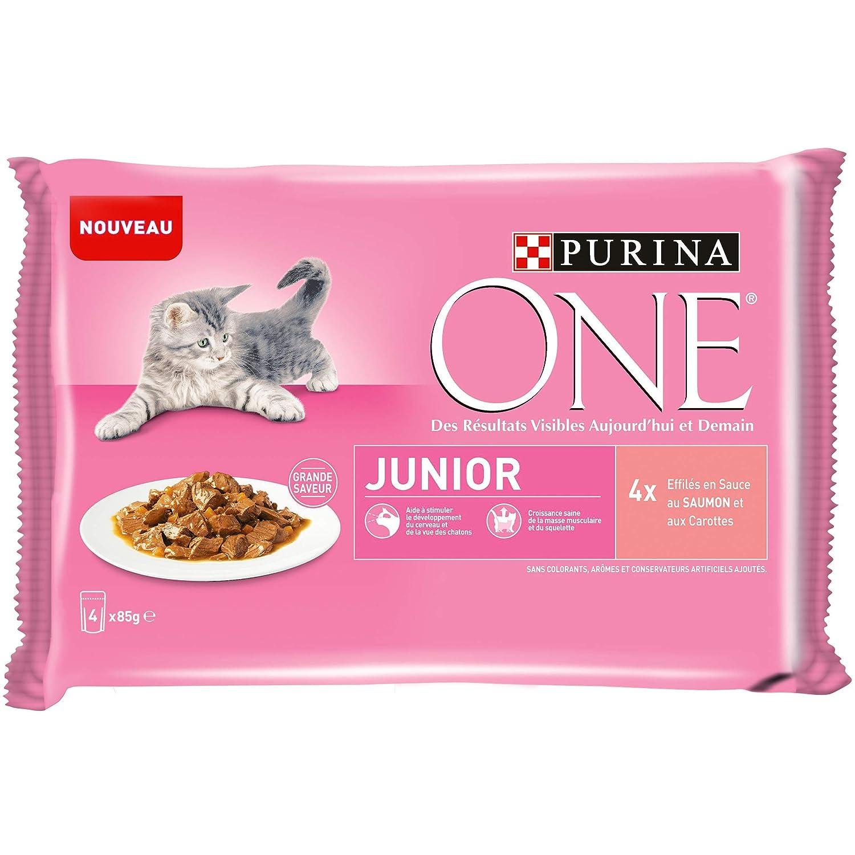 PURINA ONE Chat Junior - de 1 à 12 mois -au Saumon- 4x85g - Sachet fraîcheur pour chaton Nestle ProPlan 12350482