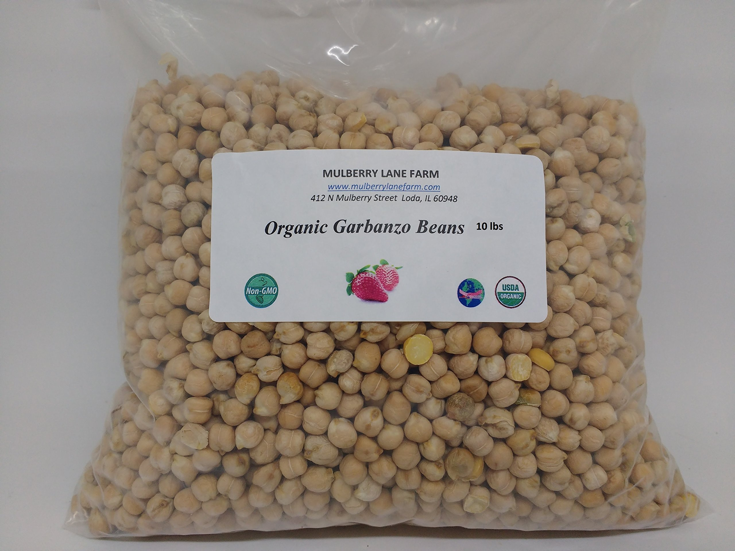 Garbanzo Beans, 10 lbs (Ten Pounds), (Chick Peas), USDA Certified Organic, Non-GMO, Dried, Great for Hummus! BULK.