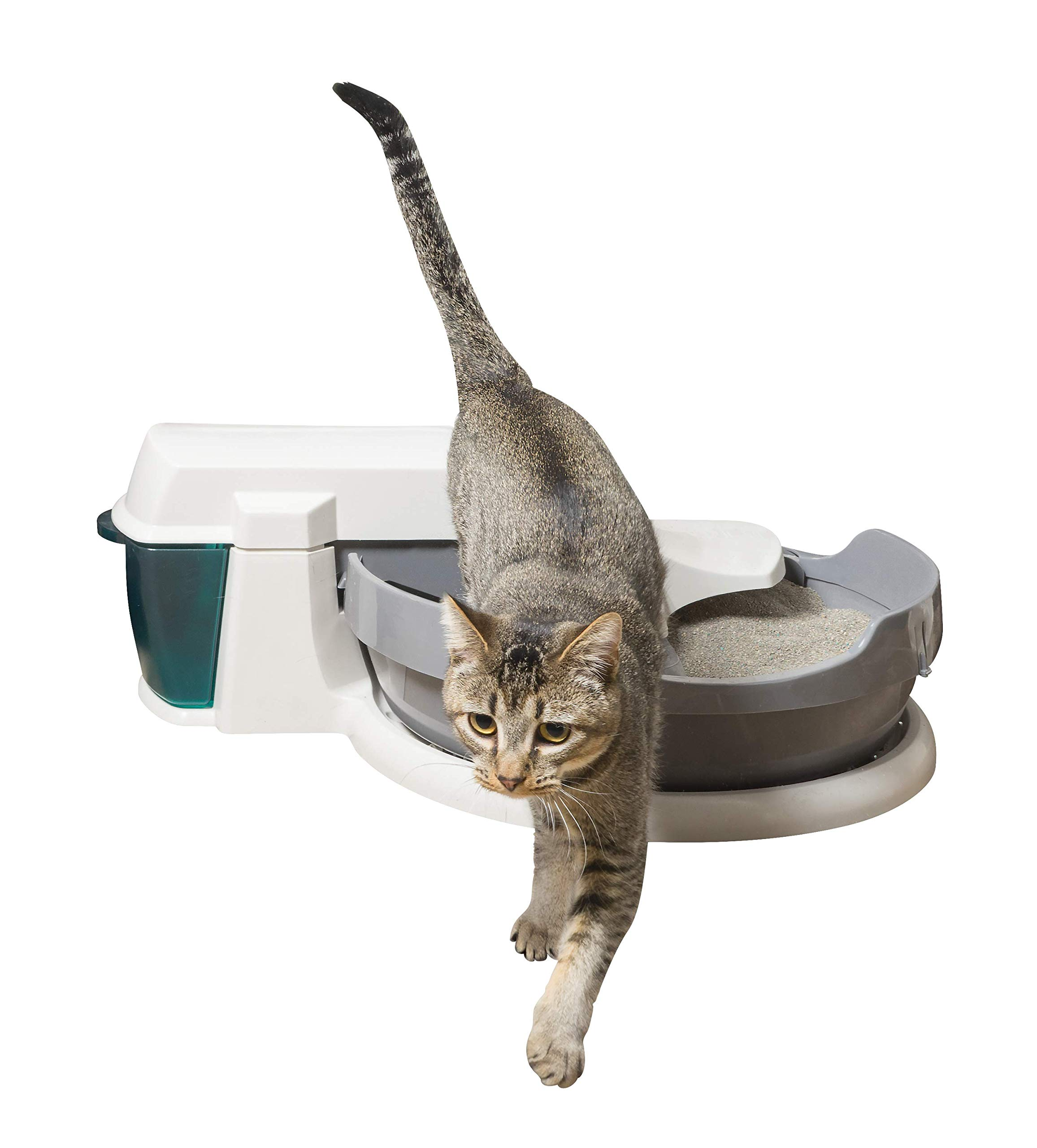 PetSafe Simply Clean Self-Cleaning Cat Litter Box, Automatic, Works with Clumping Cat Litter by PetSafe