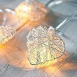Lights4fun Guirlande Lumineuse LED à Piles avec 10 Coeurs Argentés en Grillage