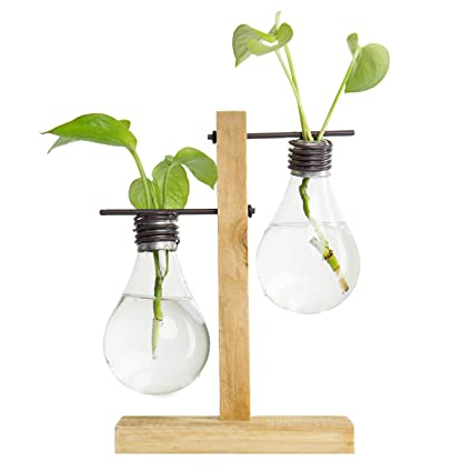 Amazon Mygift Industrial Chic Dual Light Bulb Vases With Wood