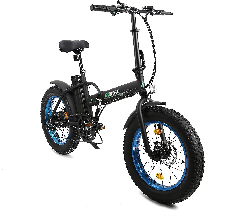 Ecotric Electric Bike